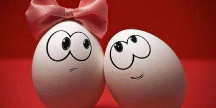Παράταση ζωής των αυγών