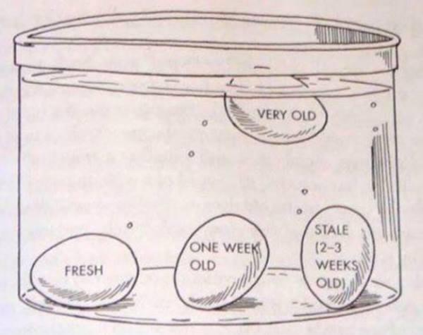 Πώς θα καταλάβω αν ένα αυγό είναι παλιό