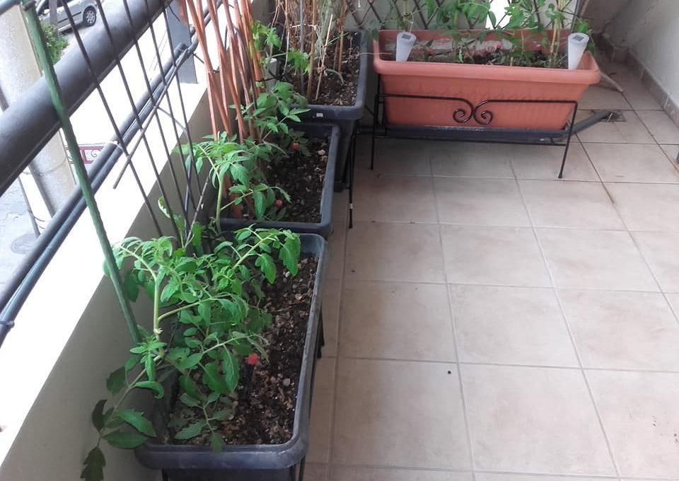 Σύστημα αποχέτευσης για τις γλάστρες στο μπαλκόνι