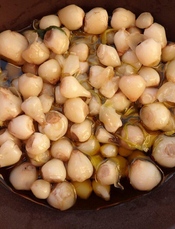 Βολβοί Κρήτης-σαλάτα